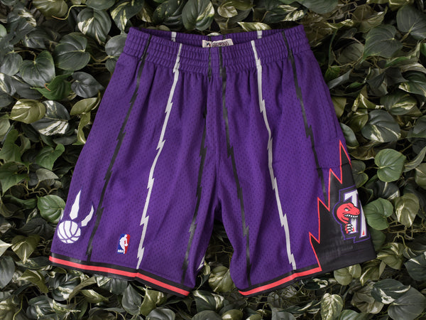 Mitchell & Ness NBA Swingman Shorts 'Raptors' [540BA-336]