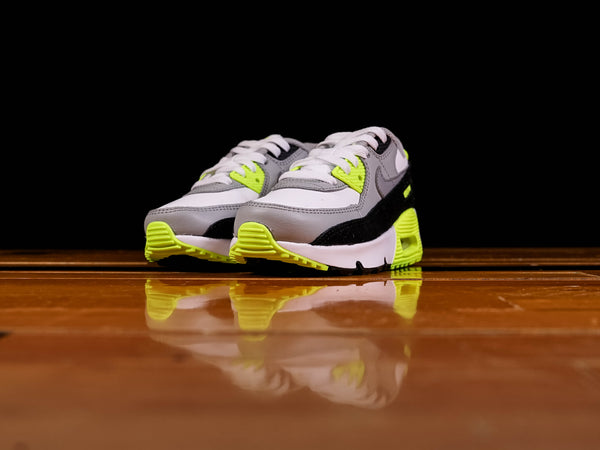 Nike Air Max 90 PS [CD6867-101]