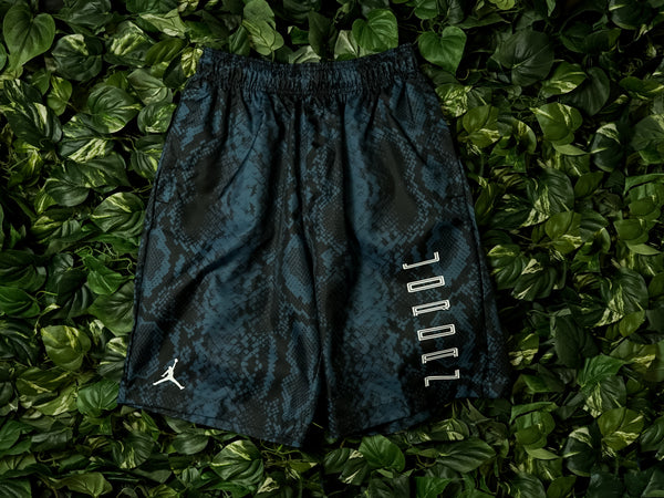 Men's Air Jordan AJ11 Snakeskin Shorts [CI0312-414]