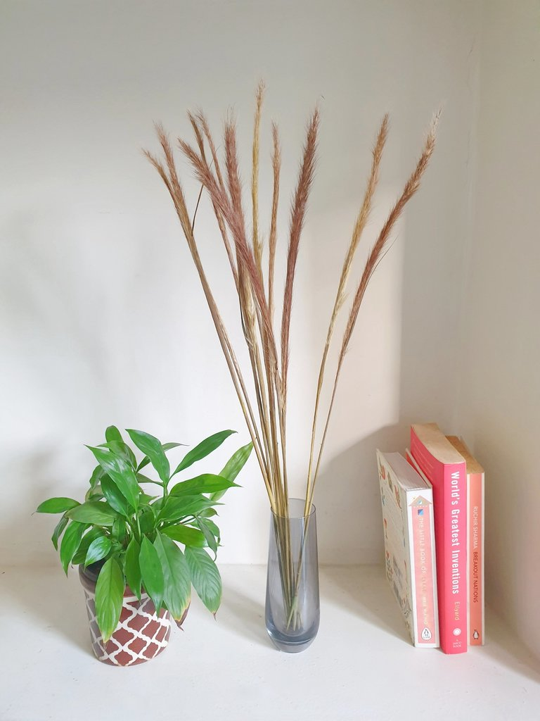 Naturally Dried Grass in Vase