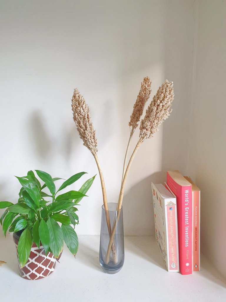 Naturally Dried Sorghum Bouquet