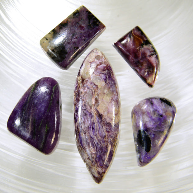 Charoite Cabochon Gems 67ct.