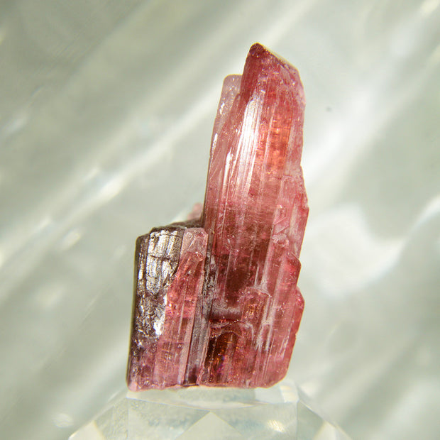 Naturally Terminated Rubellite Tourmaline Crystal - 103 ct