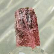 Deep Red Natural Rubellite Tourmaline Crystal - 113 ct
