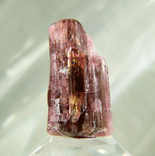 Deep Red Rubellite Tourmaline Crystal - 127 ct