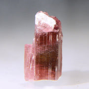 Raw Pink Tourmaline Gemstone 15 cts.