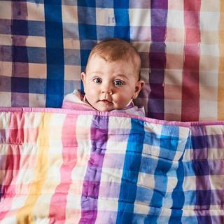 Kip & Co Sheets Kip & Co Fitted Cot Sheet - Across the Boarder