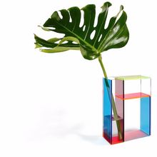 Load image into Gallery viewer, Mondri Vase - Neon
