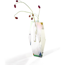 Load image into Gallery viewer, Regenbogen Tall Vase