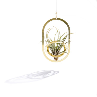 Air Pendant Plant Holder