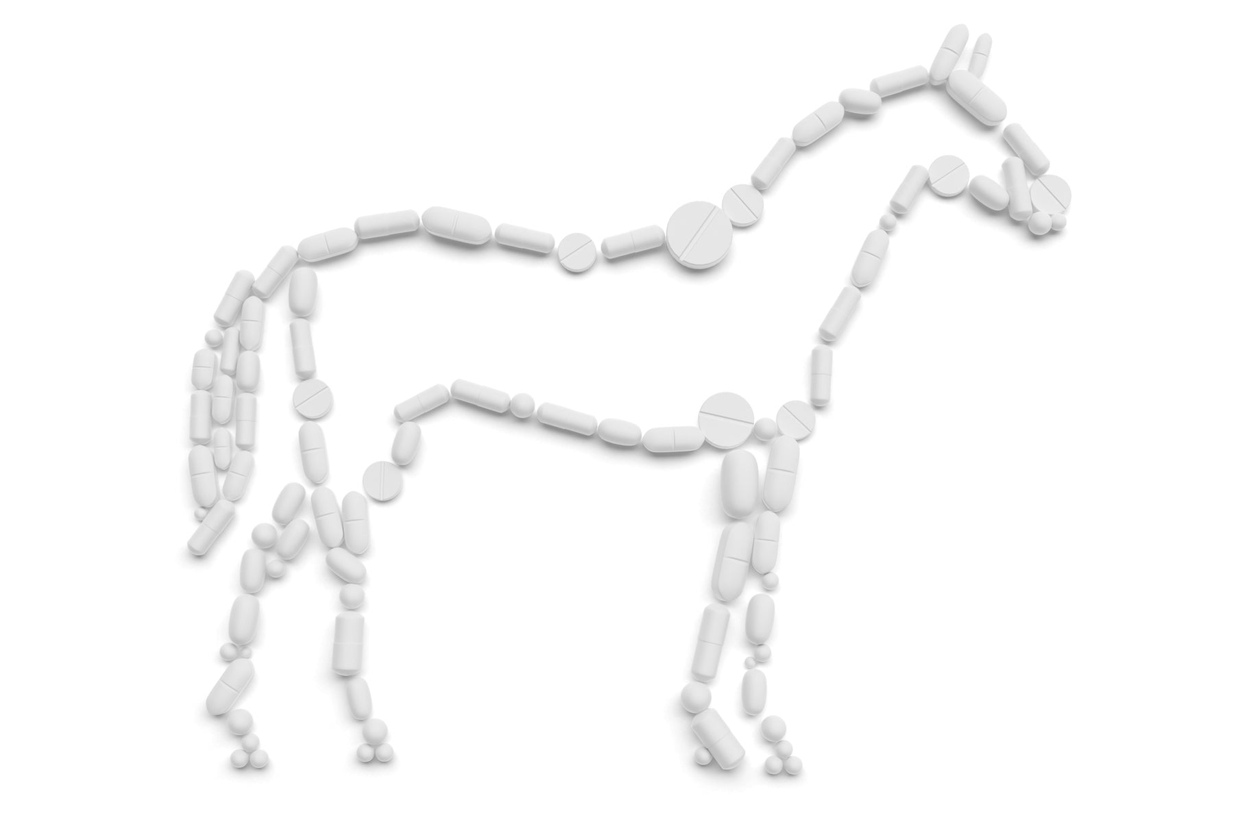 Equine Pain Management & Side Effects of Medications