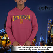Harry Potter Gryffindor Shield Boys Pullover Hoodie | Official Merchandise Angle Image 1 by Popgear
