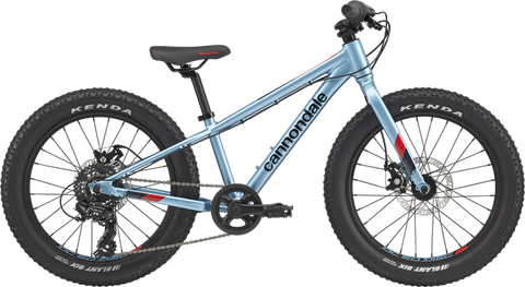 Cannondale Cujo+ 20 Bike Alpine 2021