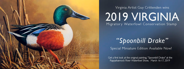 "Guy's ""Spoonbill Drake"" is chosen as 2019 Virginia Migratory Waterfowl Stamp"