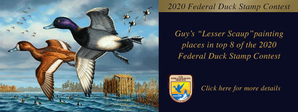 Guy places in top 8 of Federal Duck Stamp Contest