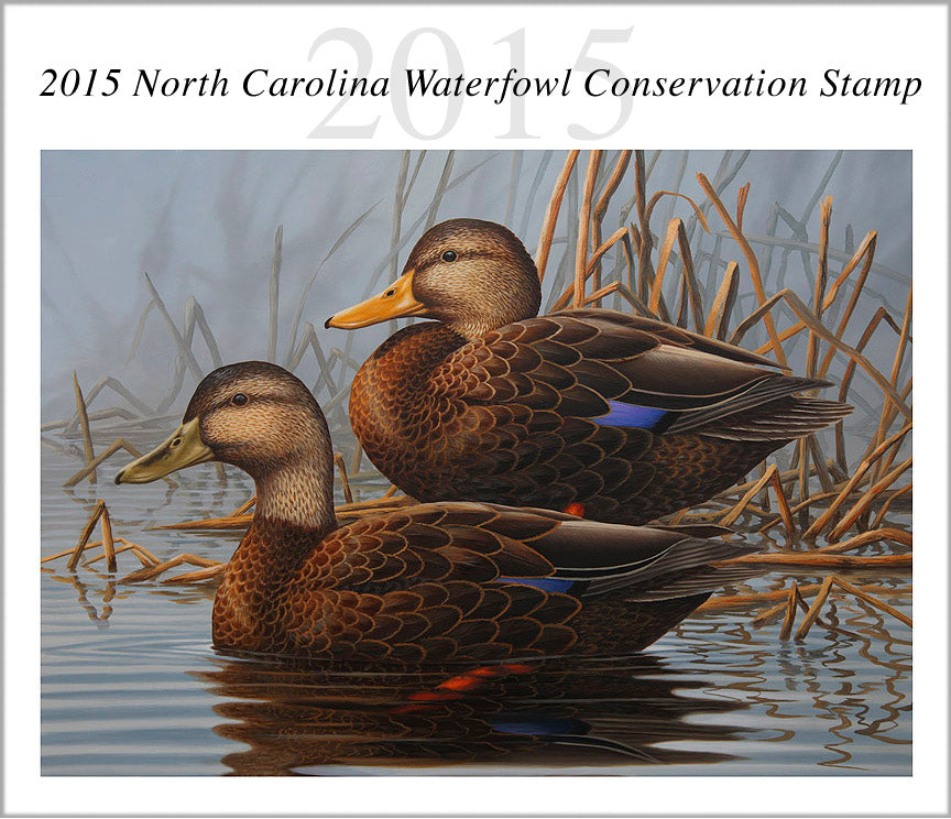 Guy Crittenden Wins 2015 North Carolina Duck Stamp