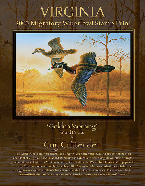 "2005-06 Virginia Duck Stamp Print - ""Golden Morning"""