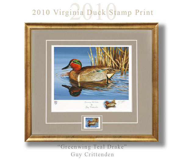 "2010-11 Virginia Duck Stamp Print - ""Greenwing Teal Drake"""