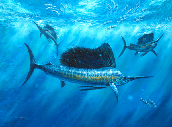 """Bait Bash"" - Sailfish  - Original Painting SOLD"