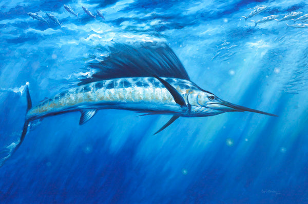 """Blue Crush"" -  Sailfish  - Original Painting SOLD"