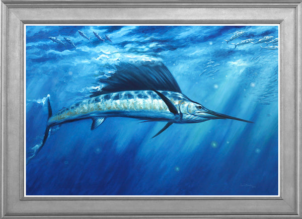 """Blue Crush""  -  Pacific Sailfish"
