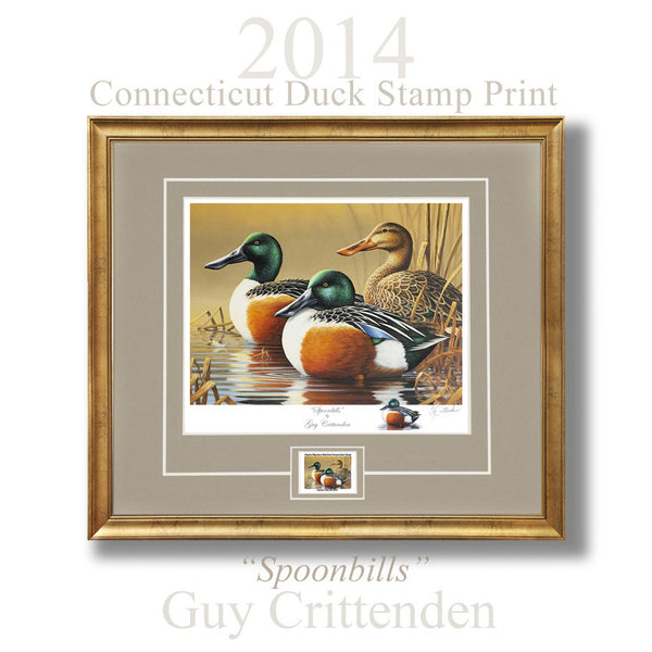"""Spoonbills"" - The 2014 Connecticut Duck Stamp Print"