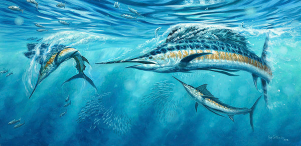 """Cutting Bait""  -  Pacific Sailfish"
