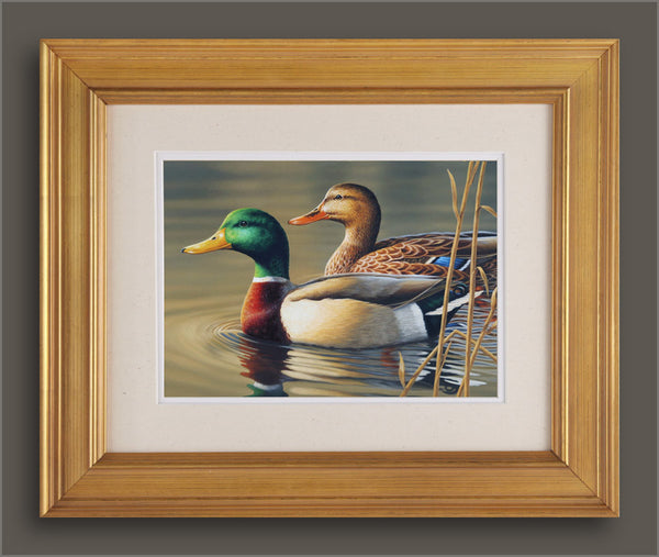 """Swimming Mallards"" - ORIGINAL  - SOLD"