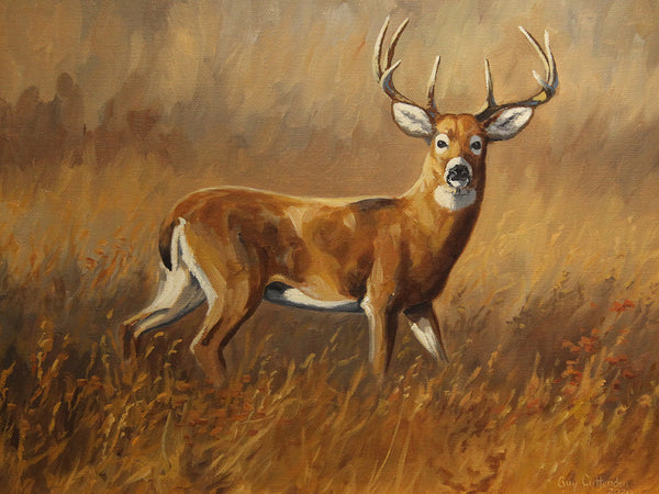 """Legend"" -  Whitetail Deer  -  SOLD"