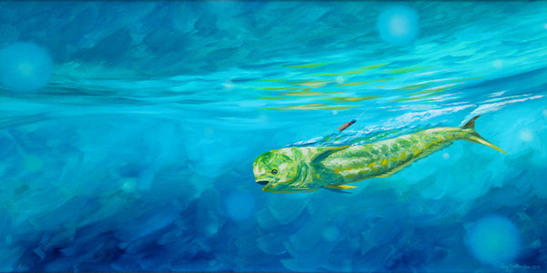 """Mahi Hooked Up""  -  SOLD"