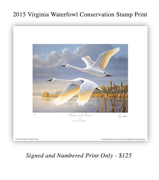 2015-16 Virginia Migratory Waterfowl Conservation Stamp Print