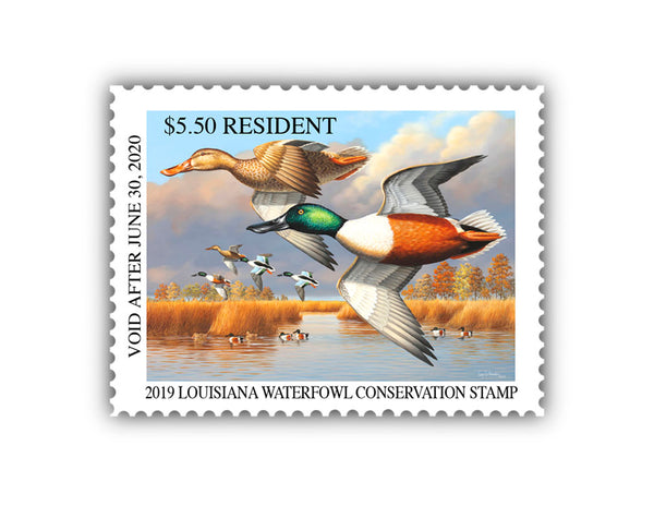 2019 Louisiana Duck Stamp Print