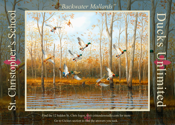 """Backwater Mallards""  -  St. Christopher's Special Edition Print"