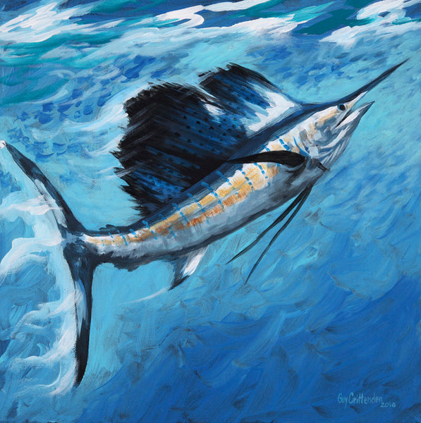 """Rising Sailfish"""