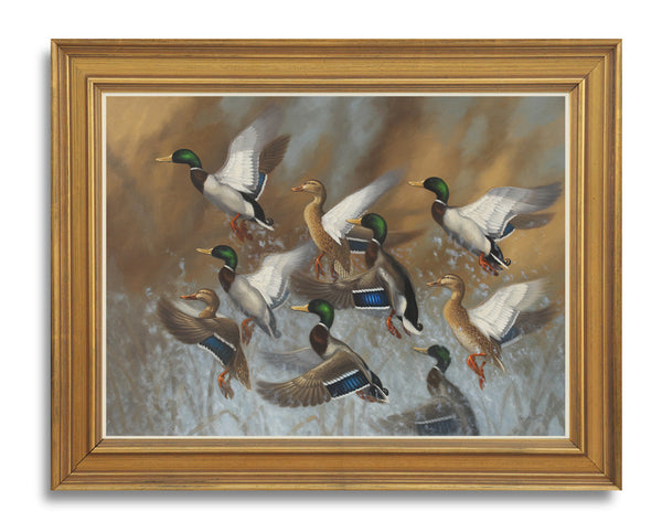 """Royal Flush"" - Mallards  -  SOLD"