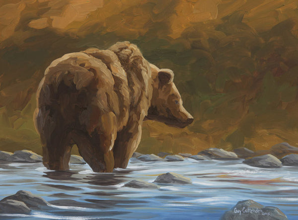"""Salmon Run""  -  North American Grizzly Bear - SOLD"