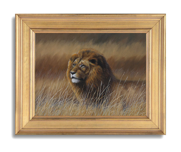 """Watching"" - Lion - SOLD"