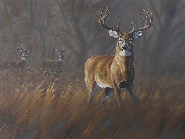 """The Guardian"" - Whitetails  - SOLD"