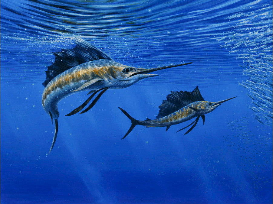 deep blue pacific sailfish original painting sold crittenden
