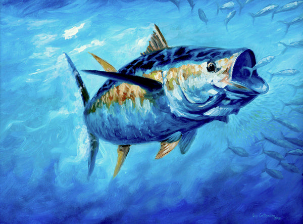 """Wide Open""  -  Yellowfin Tuna"