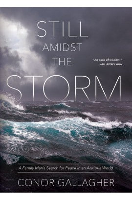 Still Amidst the Storm:  A Family Man's Search for Peace in an Anxious World Still Amidst the Storm: A Family Man's Search for Peace in an Anxious World