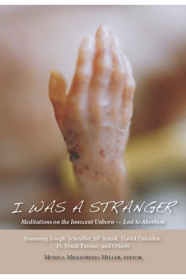 I Was A Stranger; Meditations on the Innocent Unborn - Lost to Abortion