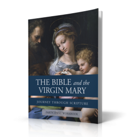 The Bible and the Virgin Mary Workbook