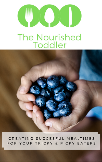 The Nourished Toddler Program