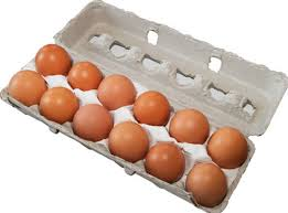 Steve's Farm Fresh Eggs - Dozen