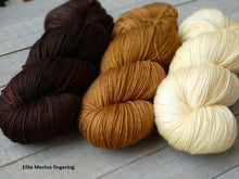 Load image into Gallery viewer, Ancestral set - Elite fingering - Fall for November yarns