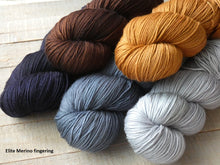 Load image into Gallery viewer, Autumn Frost set - Elite Merino fingering - Fall for November yarns