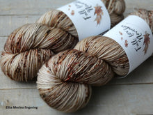 Load image into Gallery viewer, Hollow Birch - Vibrance collection - Elite Merino fingering - Fall for November yarns