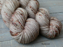 Load image into Gallery viewer, Hollow Birch - Vibrance collection - Timeless sock - Fall for November yarns