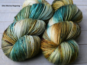 Rusty Sea - Vibrance collection - Elite Merino fingering - Fall for November yarns